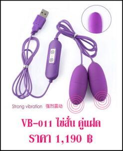 ไข่สั่น Vibrator VB-011-1