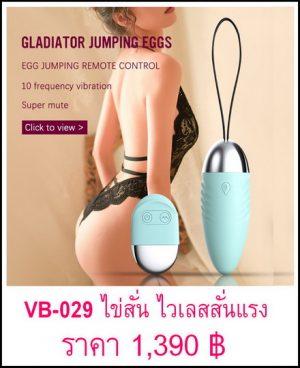 ไข่สั่น VB-029-1