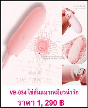 ไข่สั่น VB-034-1