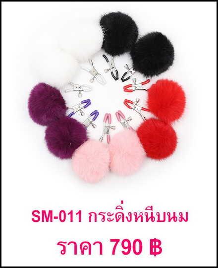 bdsm- SM-011