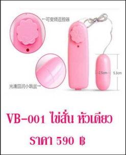 vibrator-VB-001